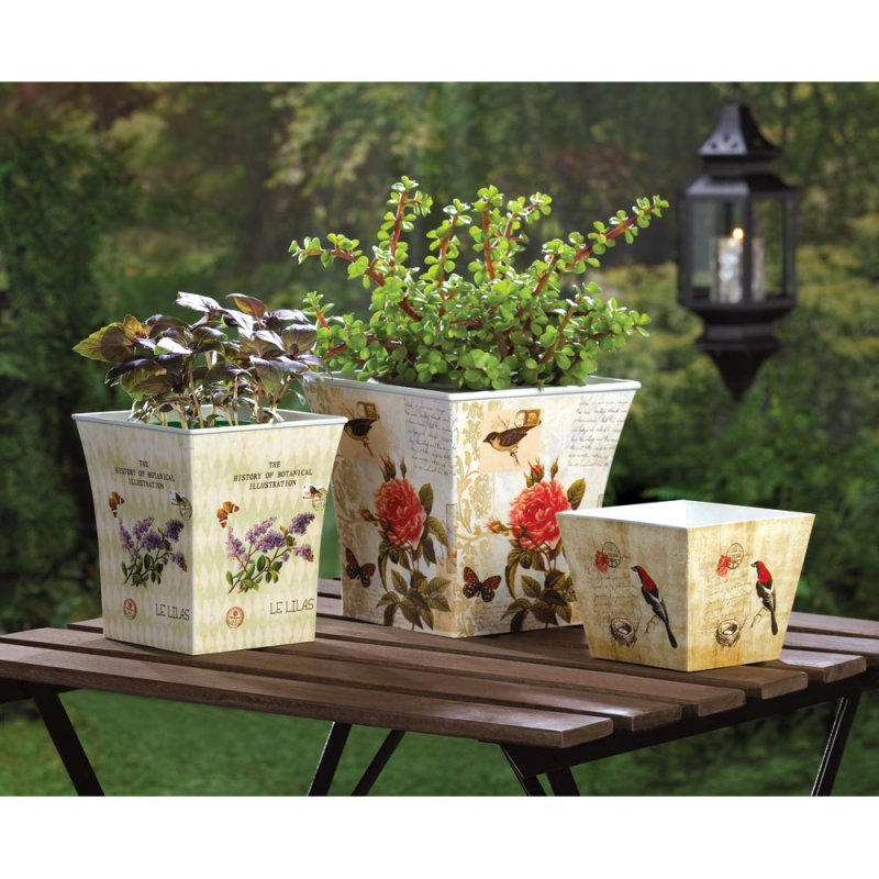 Set of 3 Butterflies, Birds, Botanical Themed Planters, Flower Pots