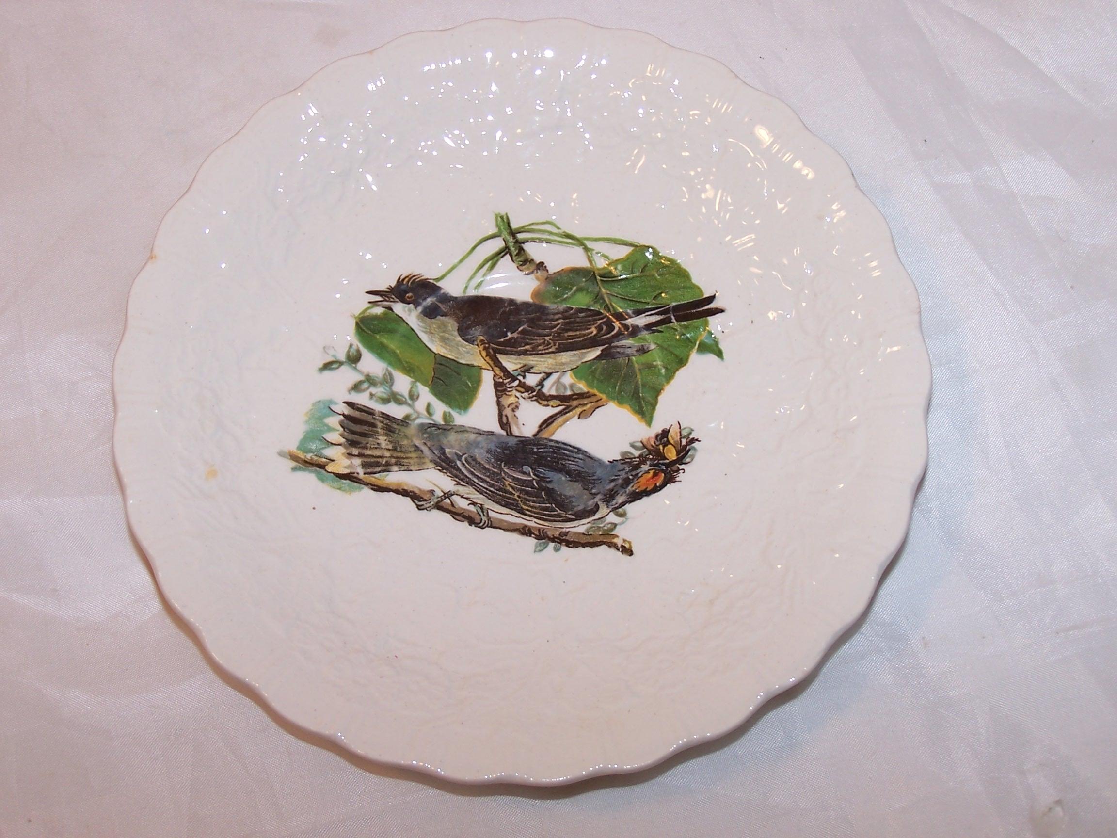 '.Kingbird, Plate 79.'