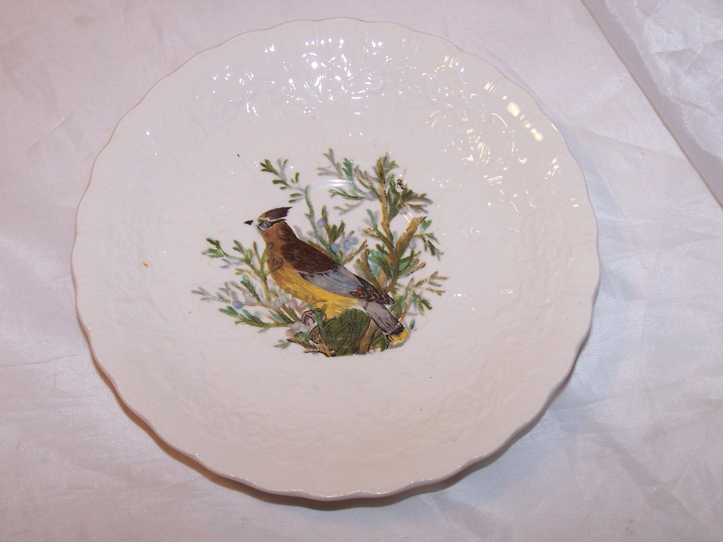 Cedar Bird, Plate 43