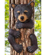 Bear Tree Hugger