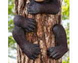 Image 3 of Bear Tree Hugger