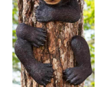 Image 5 of Bear Tree Hugger