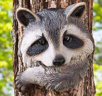 Image 1 of Raccoon Tree Hugger