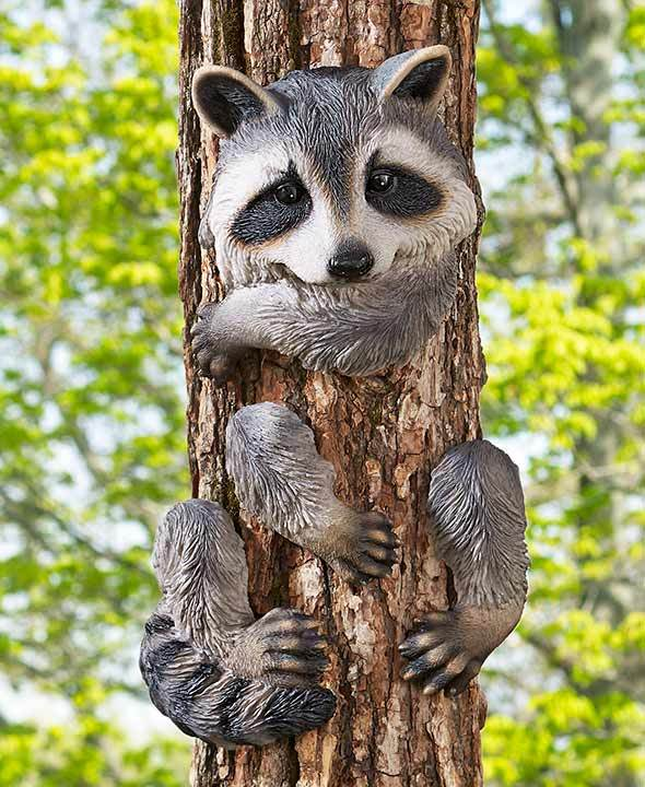 Image 5 of Raccoon Tree Hugger