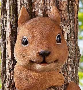 Image 1 of Squirrel Tree Hugger