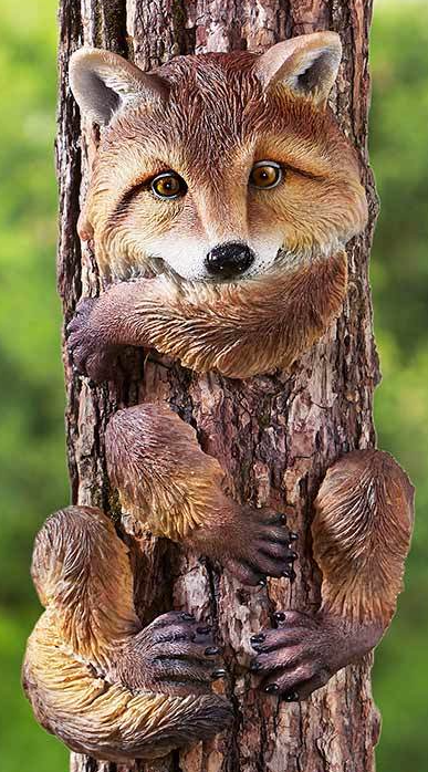 Fox Tree Hugger
