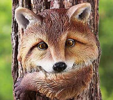 Image 2 of Fox Tree Hugger