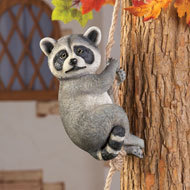 Image 0 of Climbing Raccoon
