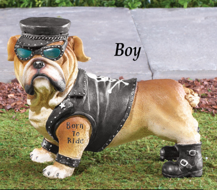 Boy Biker Bulldog