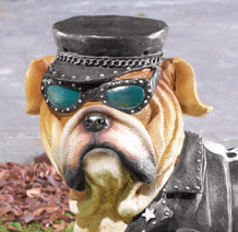 Image 1 of Boy Biker Bulldog