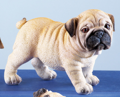 Image 1 of Pug Family Set Figurines