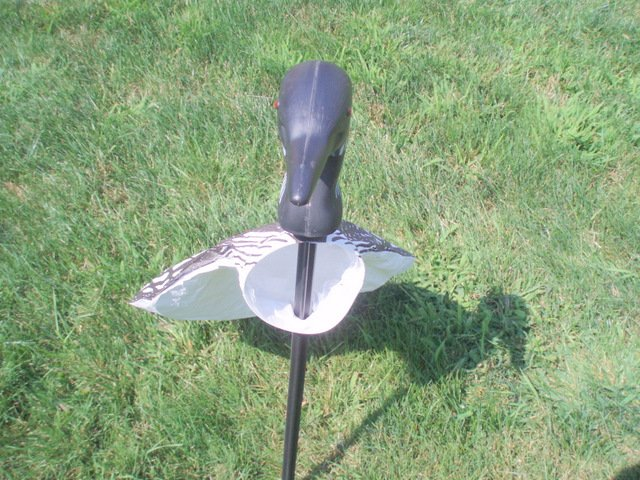 Image 3 of Loon Lawn Decor WindSock Stake Decoy