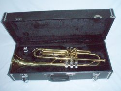 Pathfinder Bb Beginners Trumpet with case Musical Instrument