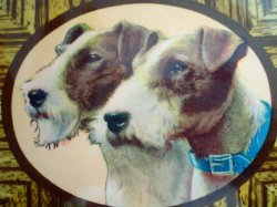 '.Photo on Wood Wire Fox Terrier.'