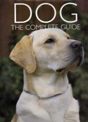 Dog: The Complete Guide by Sarah Whitehead