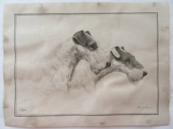 '.Fox Terriers by Danchin Print.'
