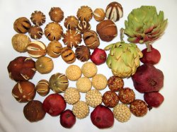 Dried Fruit & Seed Balls Home Decor Pomegranates, Citrus, Artichoke