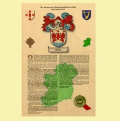 Irish Surname Family Crest Irish Sept History Portrait Style
