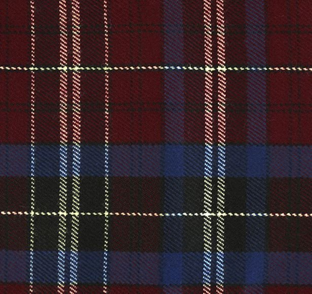 Image 1 of Gwyn Wynne Welsh Tartan Worsted Wool Unisex Fringed Scarf