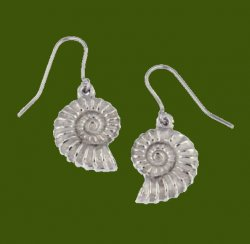 Ammonite Shell Drop Sheppard Hook Stylish Pewter Earrings