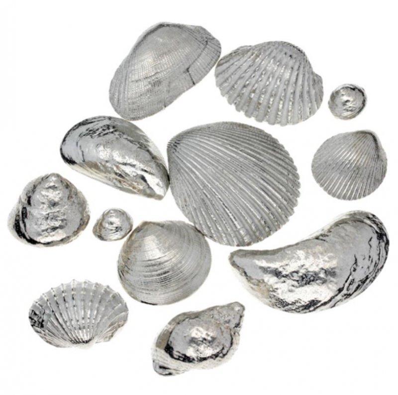 Image 1 of Memories From The Seaside Twelve Seashells Stylish Pewter Set