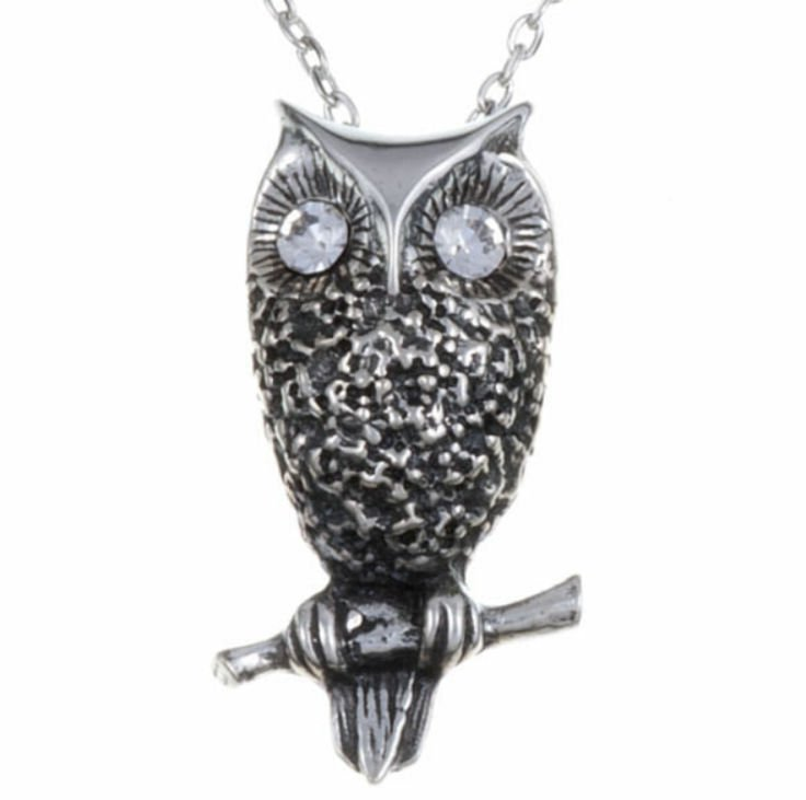 Image 1 of Owl Bird Themed Textured Clear Crystal Stylish Pewter Pendant