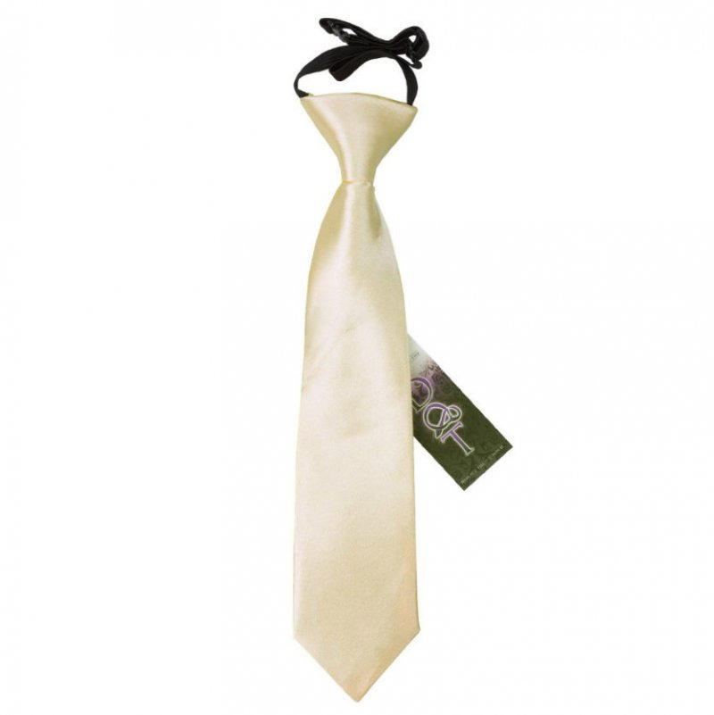 Image 1 of Champagne Boys Plain Satin Elastic Tie Wedding Necktie