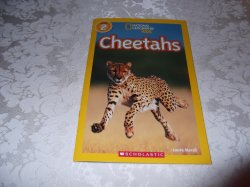 Cheetahs Laura Marsh National Geographic Kids Level 2 brand new sc reader