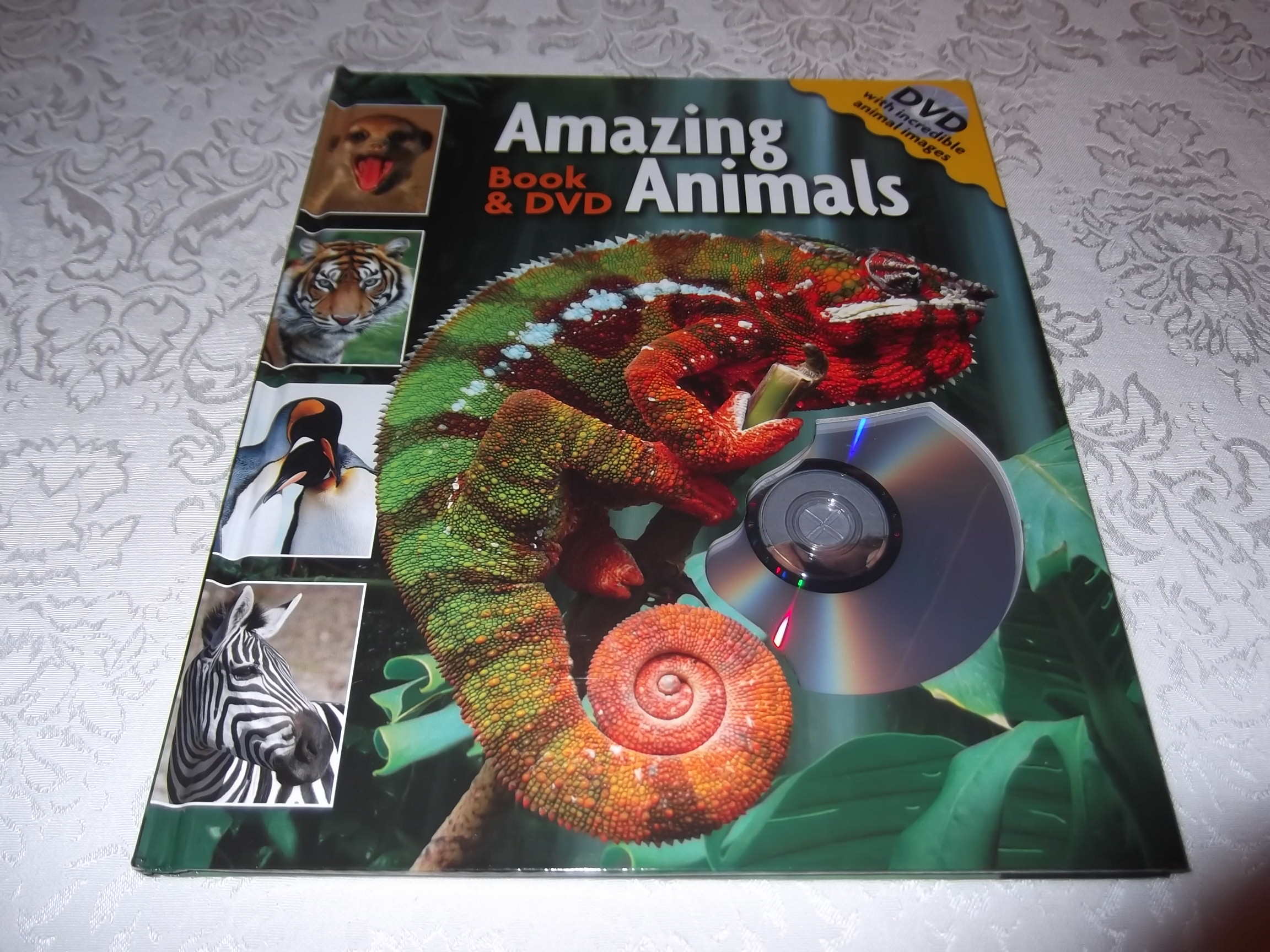 Amazing Animals Book & DVD Lori C. Froeb brand new hc