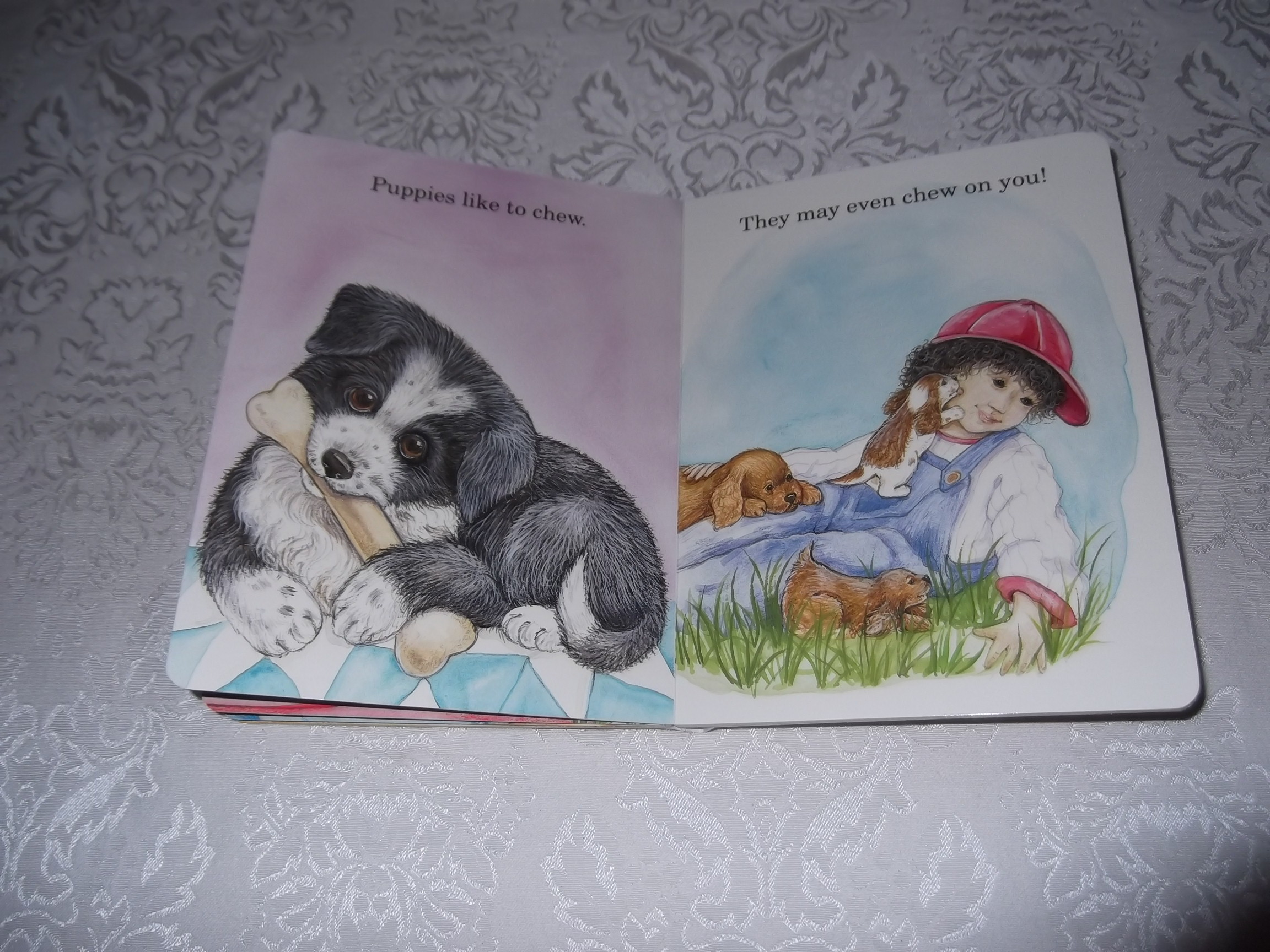 Image 5 of God Made Puppies Marian Bennet Happy Day Brand New Board Book