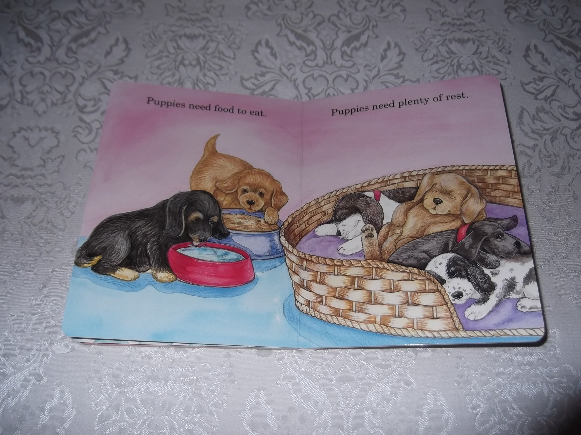 Image 6 of God Made Puppies Marian Bennet Happy Day Brand New Board Book