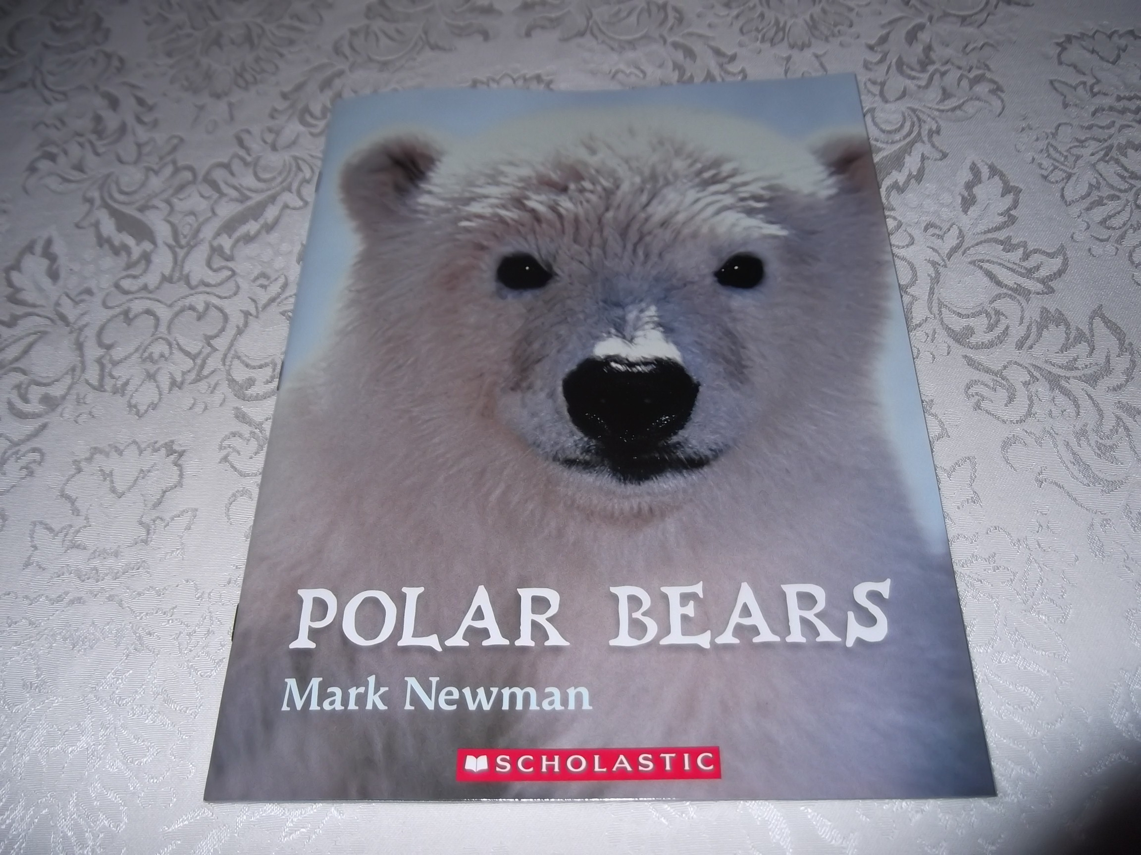 Polar Bears Mark Newman Brand New Softcover Nonfiction Resource