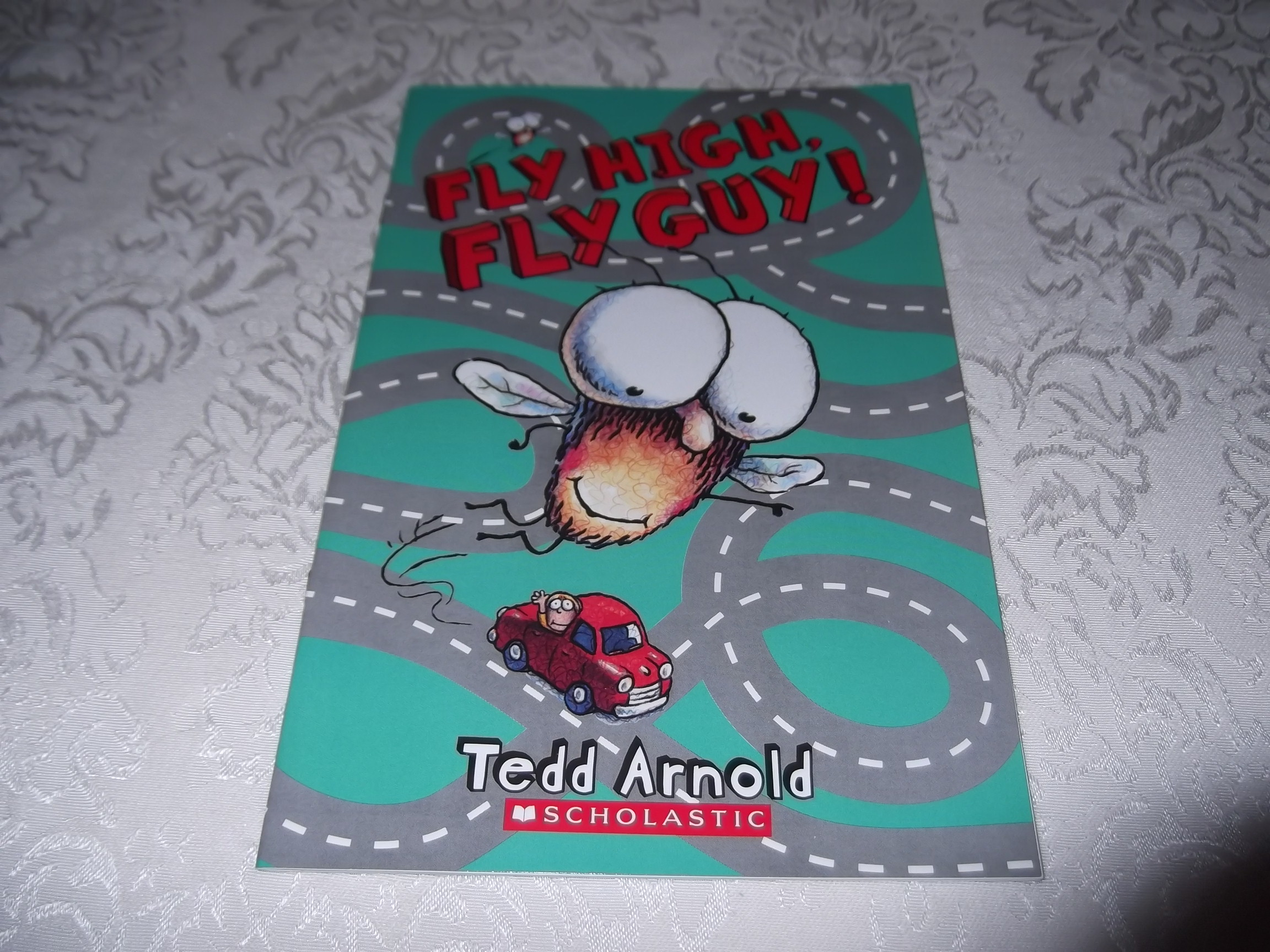 Fly High, Fly Guy! Tedd Arnold Brand New Softcover Reader