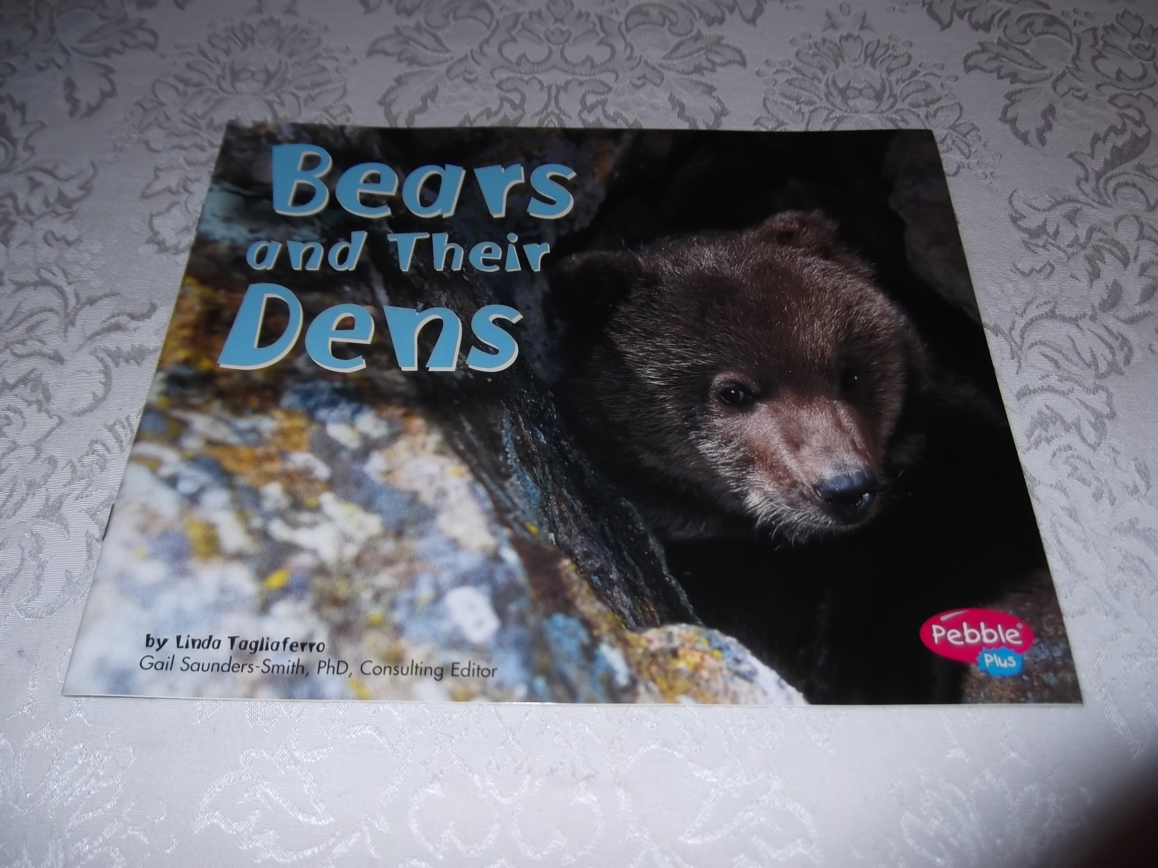 Bears and Their Dens Linda Tagliaferro Brand New Softcover