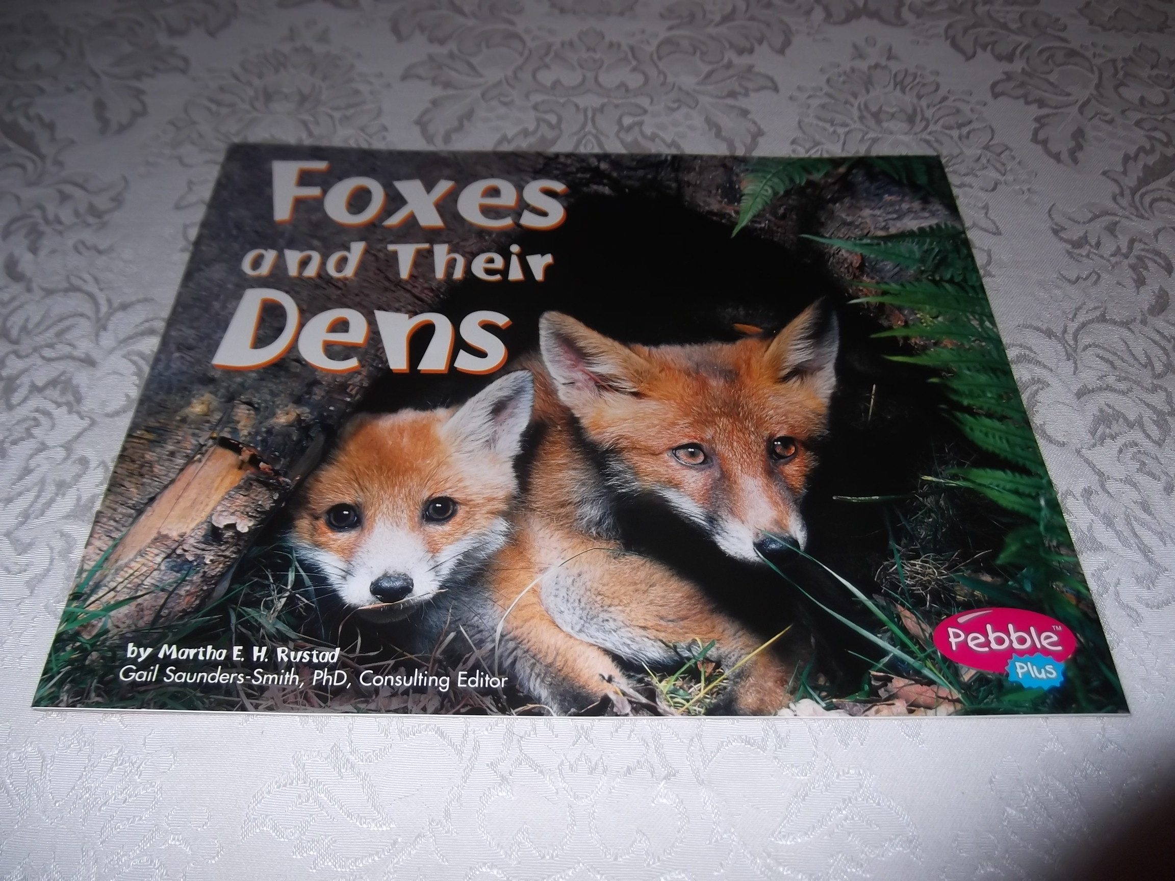 Foxes and Their Dens Martha E. H. Rustad Brand New Softcover