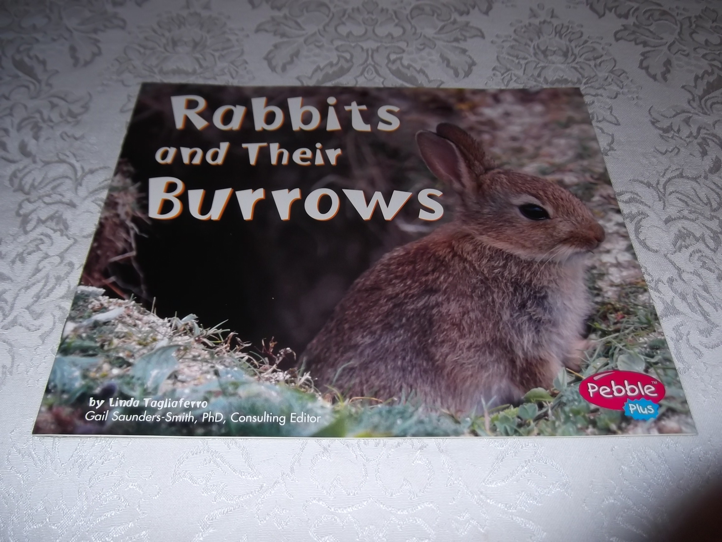 Rabbits and Their Burrows Linda Tagliaferro Brand New Softcover