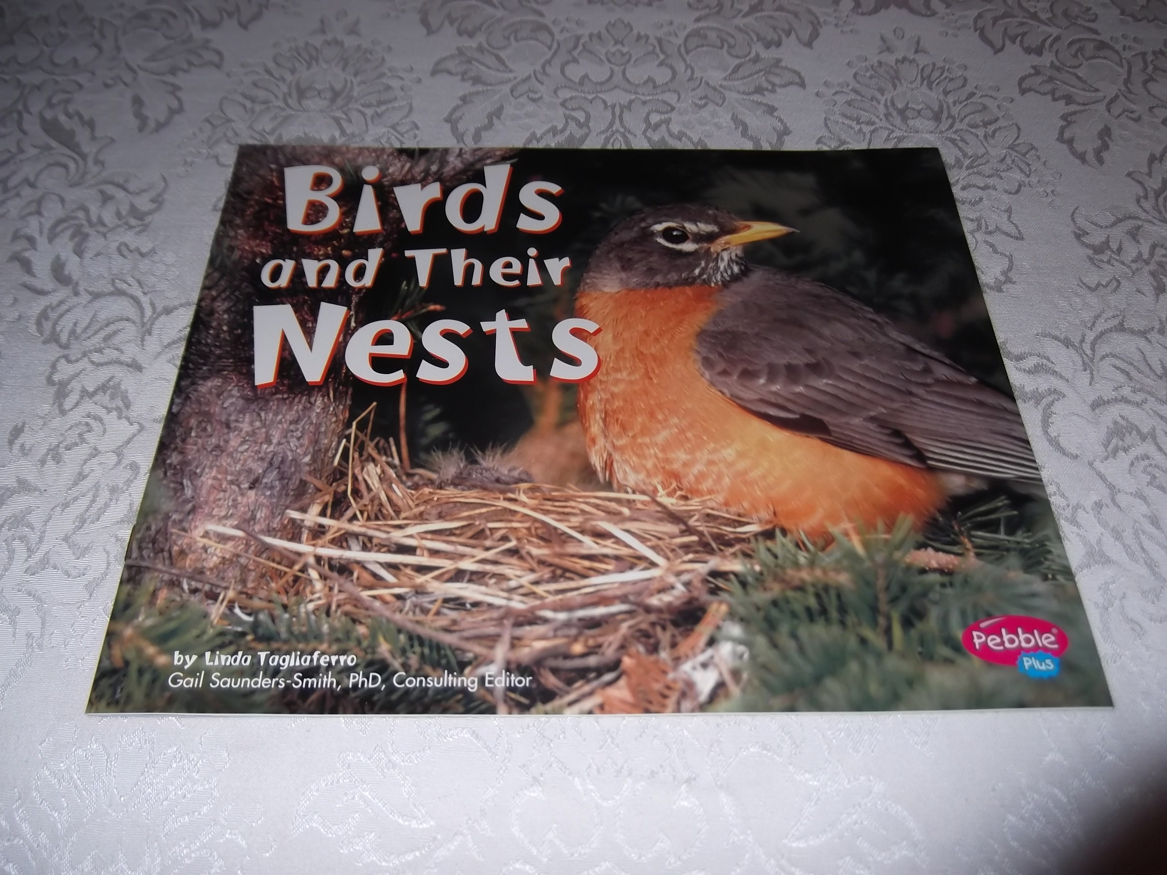 Birds and Their Nests Linda Tagliaferro Brand New Softcover