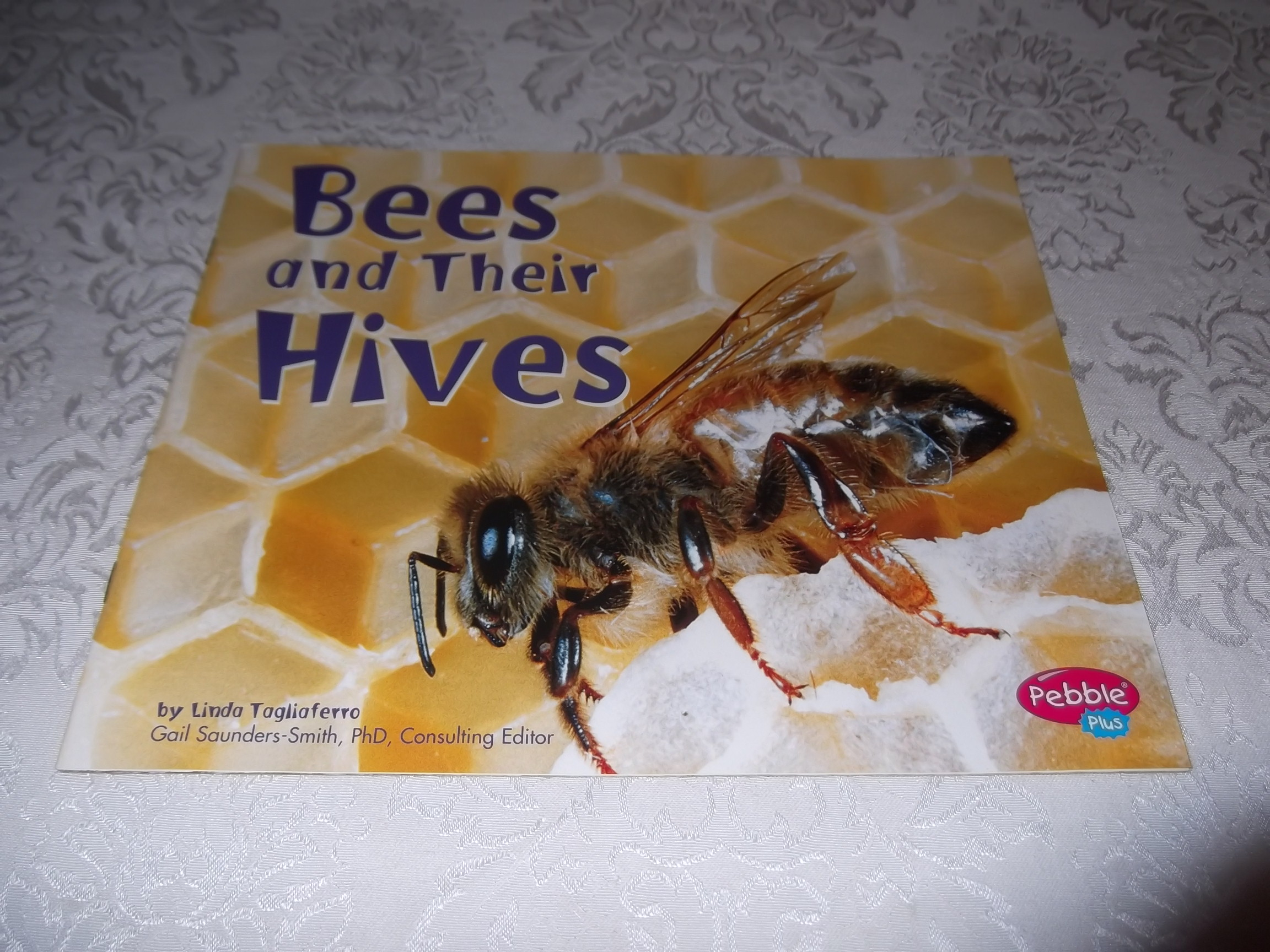 Bees and Their Hives Linda Tagliaferro Brand New Softcover
