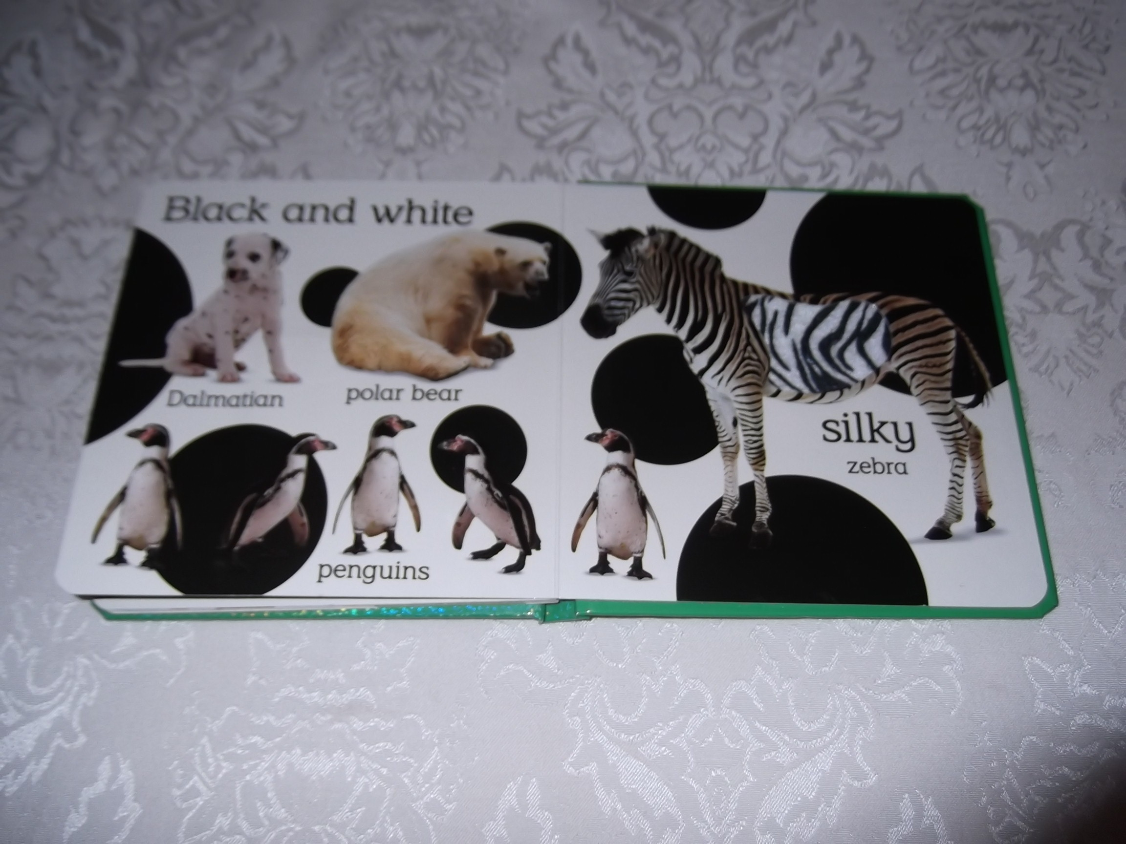 Dk Touch And Feel Animal Colors Brand New Board Book