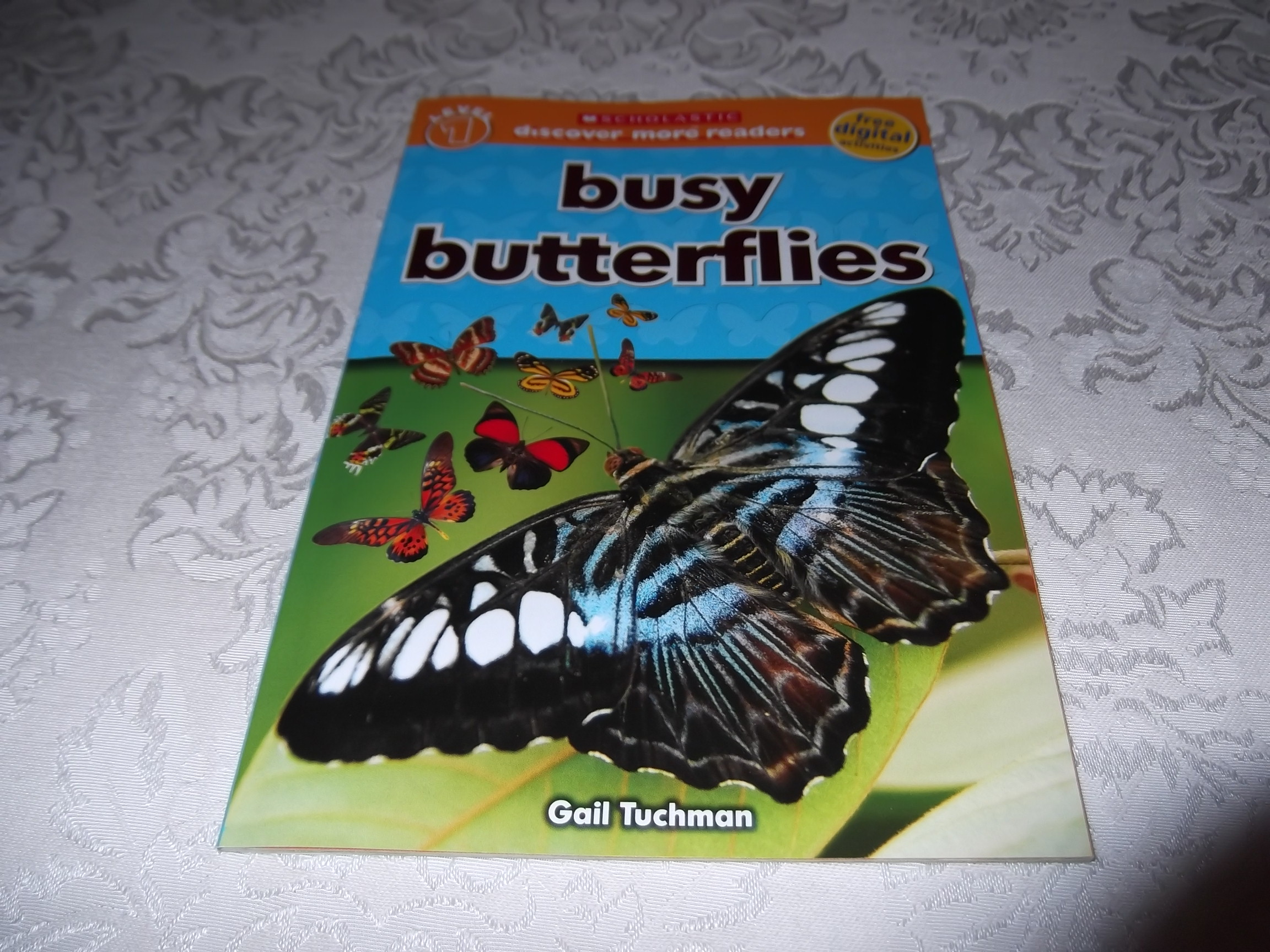 Busy Butterflies Gail Tuchman Level 1 Discover More Science Reader New