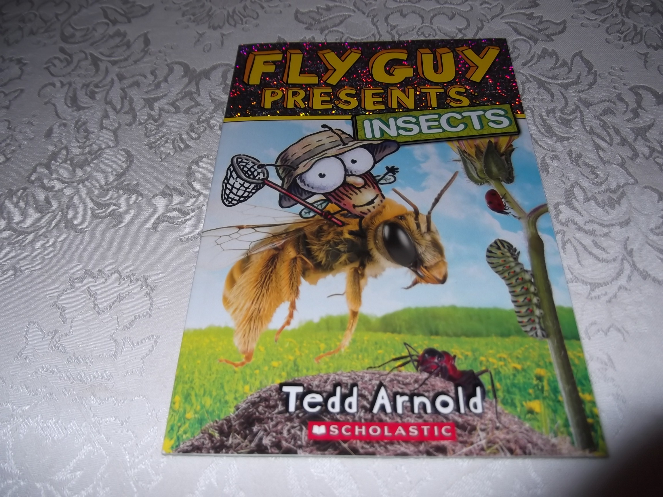 Fly Guy Presents Insects Tedd Arnold Brand New Softcover
