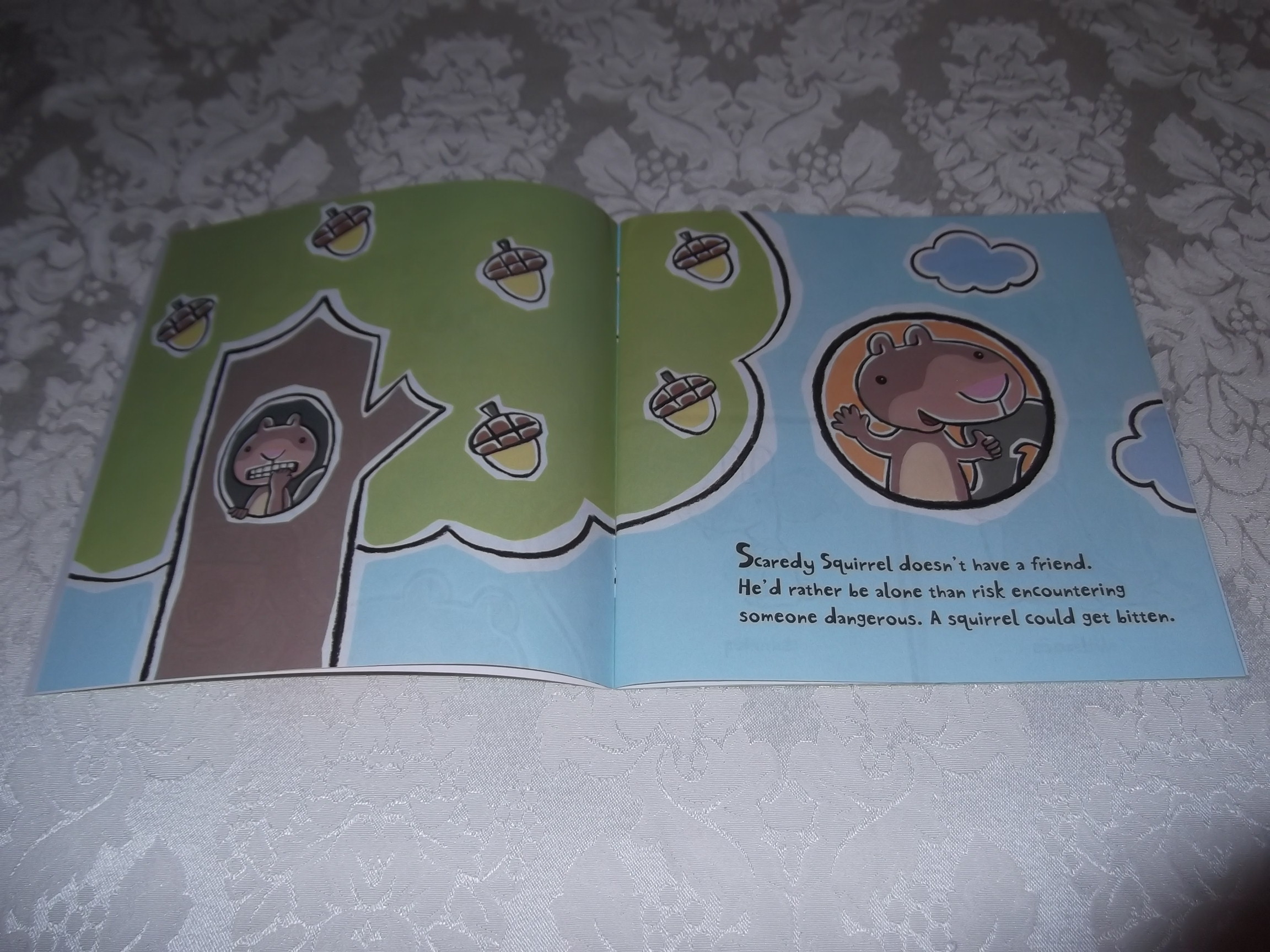 Scaredy Squirrel Makes a Friend by Mélanie Watt 2007, Hardcover Children's Book