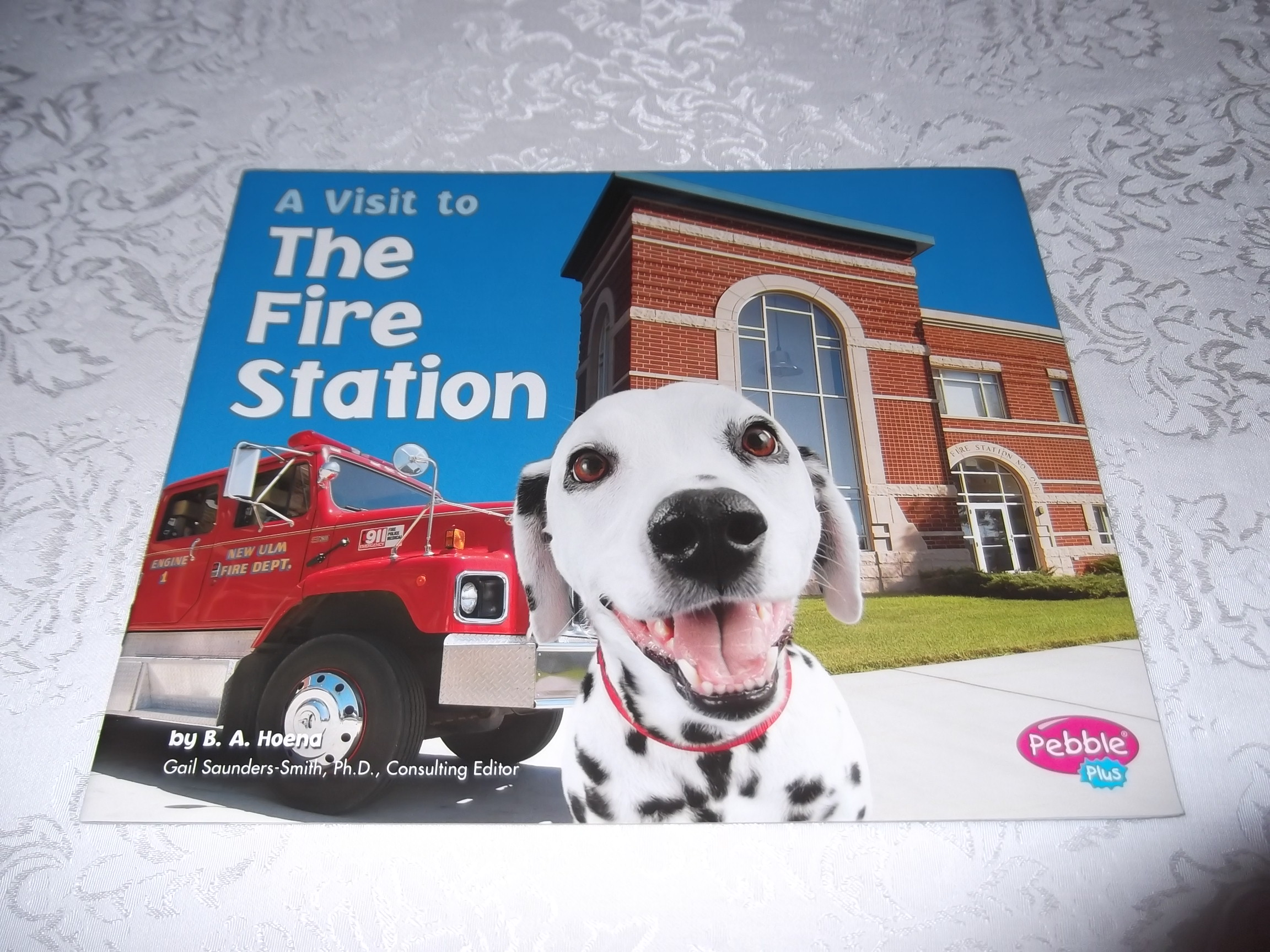 A Visit to The Fire Station B. A. Hoena Brand New Softcover