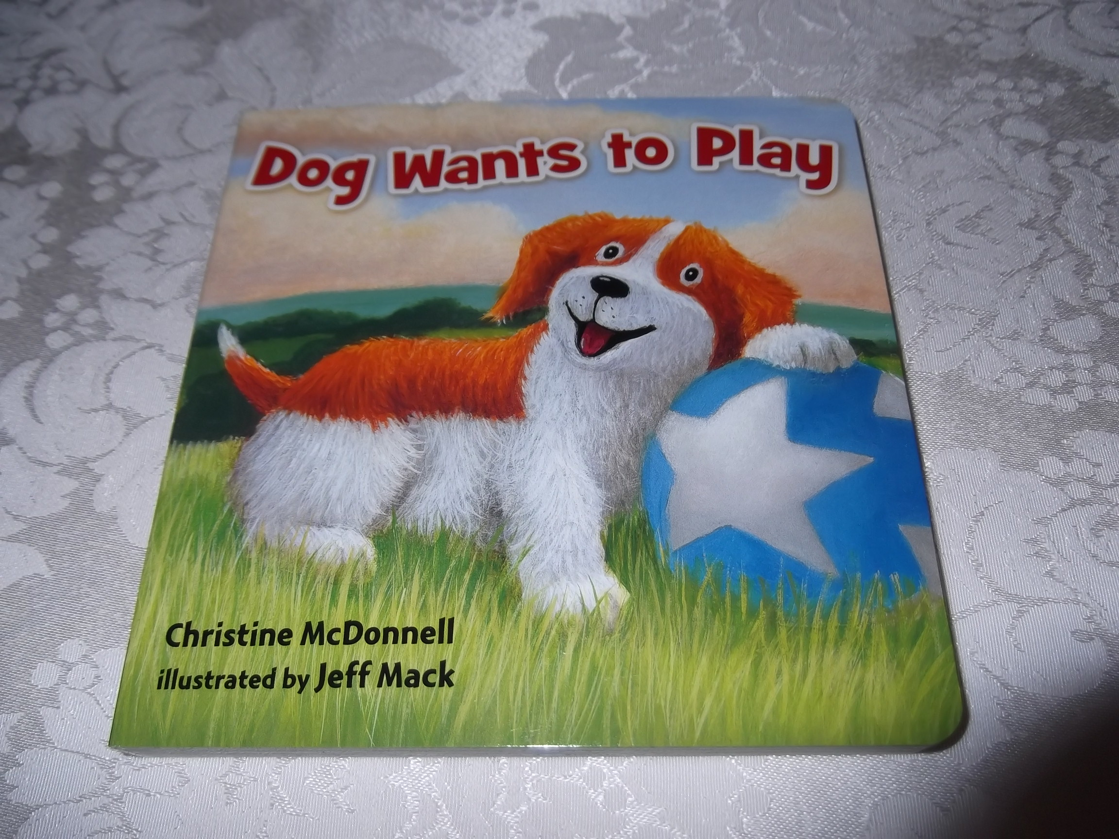Dog Wants to Play Christine McDonnell Brand New Board Book