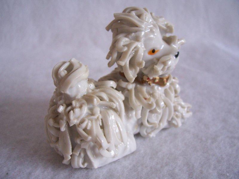 Spaghetti White Poodle