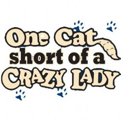 One Cat Short Of A Crazy Cat Lady T-Shirt Silk Screened Heat Transfer Unisex