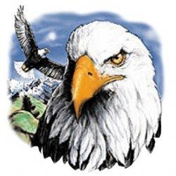 Majestic Eagle T-Shirt Silk Screened Heat Transfer Unisex