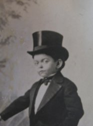 '.Little Lord Robert, Ringling.'
