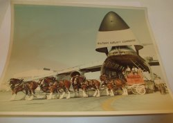 '.Military Airlift of Budweiser .'