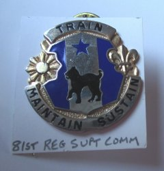 81st U.S. Army Regional Support Command Insignia Pin, G23